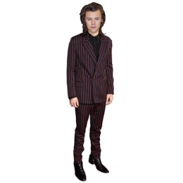 harry-styles-2015-cardboard-cutout