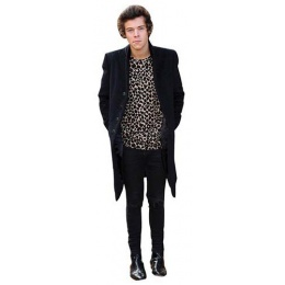 harry styles 2013 cutout