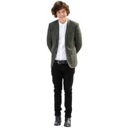harry styles grey jacket cutout