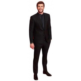 liam hemsworth cutout