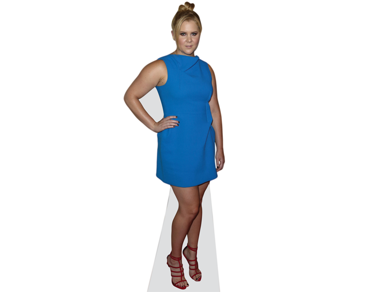 amy-schumer-blue-dress-cardboard-cutout
